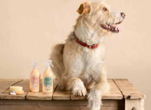 Qué es la cosmética natural | Freshly Pets